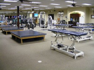 physical therapy 1