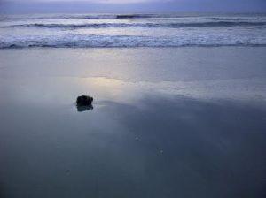 beachmorning